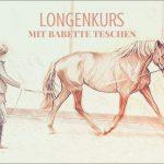 Longenkurs Babette Teschen-aktive Teilnehmer mit eigenem Pferd